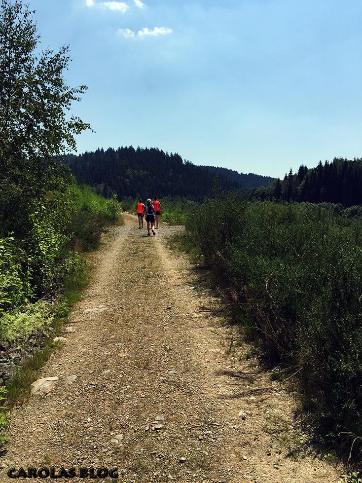 sachsentrail_trail
